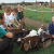 Working together with Green Dragon Eco Farm